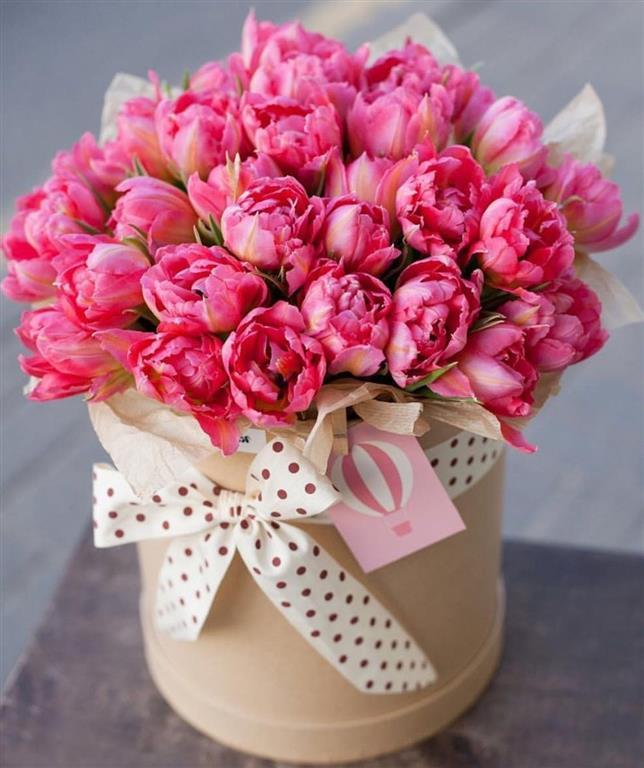 Atalar Ev Çiçekleri Hizmeti